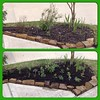 A little spring planting in my tiny front yard this Sunday. Now, back to sewing. #livinginthecity #instacollage