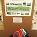 Golden Gate Park's Recreational Activities by davidsilver