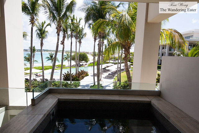 Private plunge pool at One bedroom suite