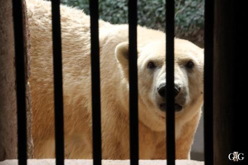Zoo Rostock 11.04.201592