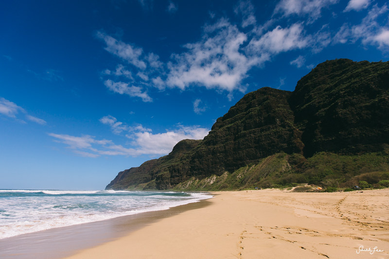 Kauai_Adventure_sarahleephoto_019