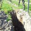 Fosse pedologique dans les vignes #chateaudeminiere #bourgueil #Loire