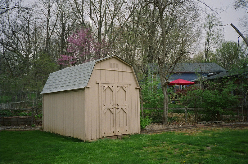 Shed and its environs