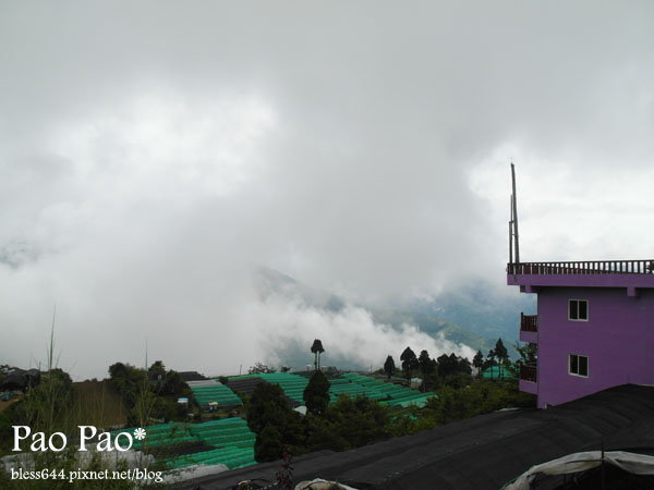 清境雲海景觀渡假山莊一館(有露台)