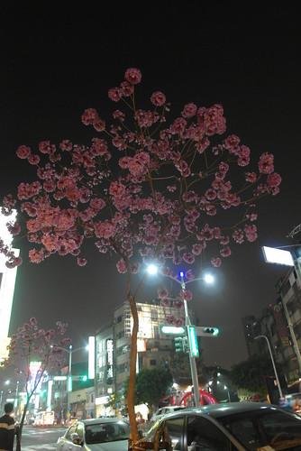 高雄過年餐廳推薦:到松江庭吃到飽日式料理店大吃特吃 (42)