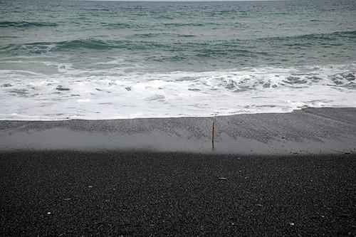 與海的方向相反,把誘餌斜插在沙灘上。圖片來源:朱雲瑋