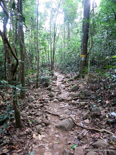 mountain-climb-manila.jpg