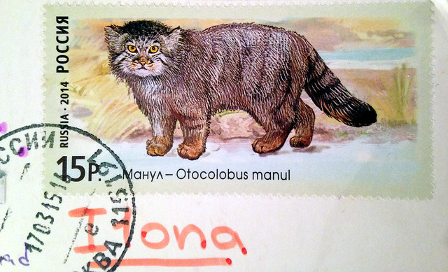 Russian Wild Cat Stamp