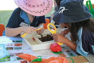 20 April, 2015 - 17:37 - Worm and compost investigation at Gulf Kids Environment Day