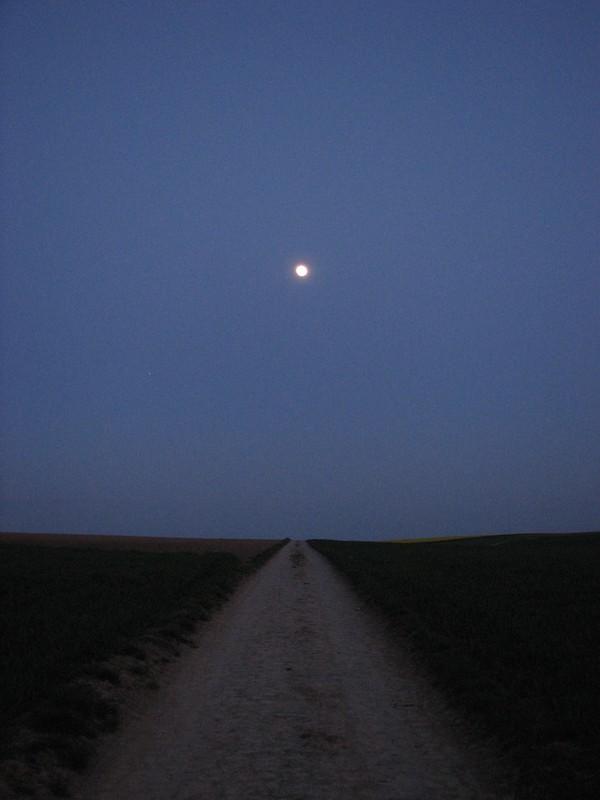 Moon Fields
