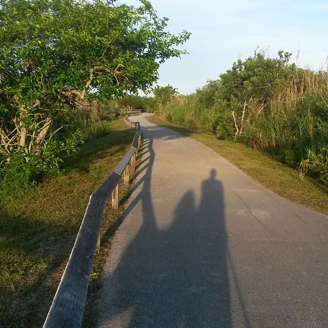 Anhinga-polku, Evergladesin kansallispuisto, Florida, USA