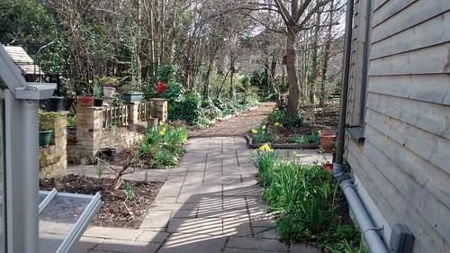 Spring at Sydenham Garden3