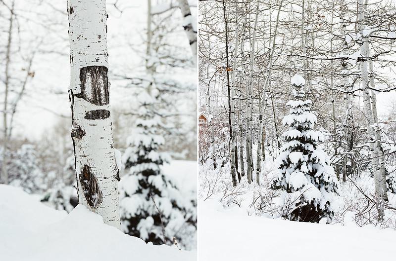 Utah Winter 2015 Diptic