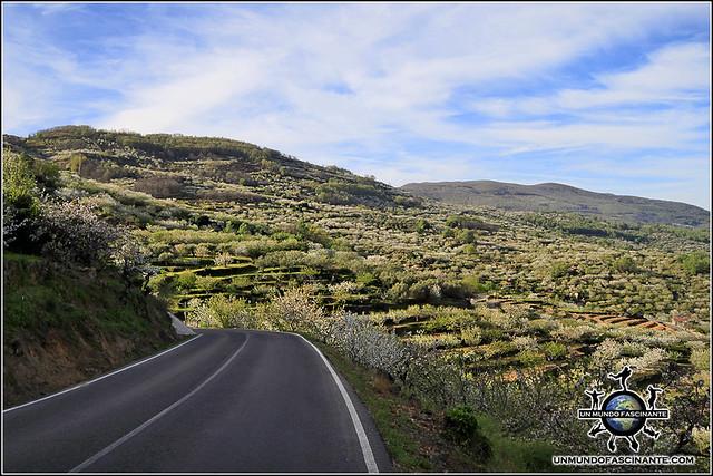 Carretera a Valdastillas, Valle del Jerte. España.