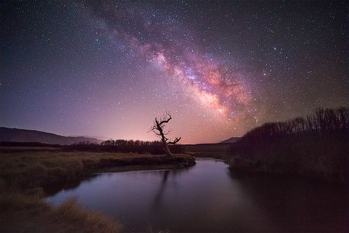 california reflection tree nature night canon river way landscape long exposure mark iii astro astrophotography 5d astronomy milky bishop f28 owens 14mm rokinon