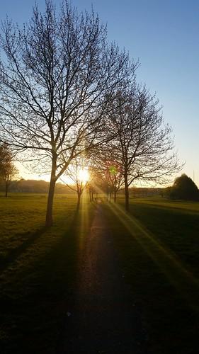 Sunrise over South London ♡