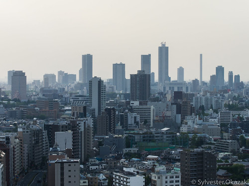 Landscape from Bunkyo Civic Center Part3