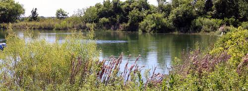irrigation pond agrilife experimentstation