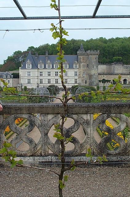 castillo de Villandry - viaje de los castillos de loira