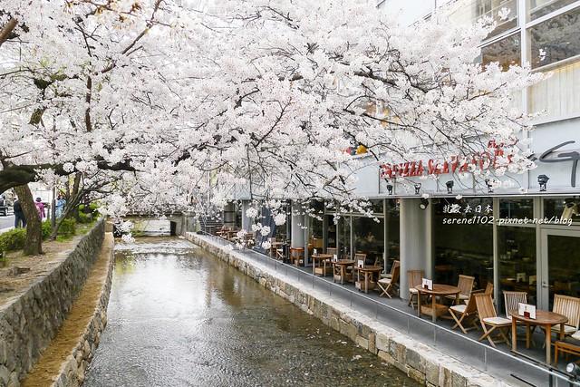 0402D8京都醍醐寺-1160621