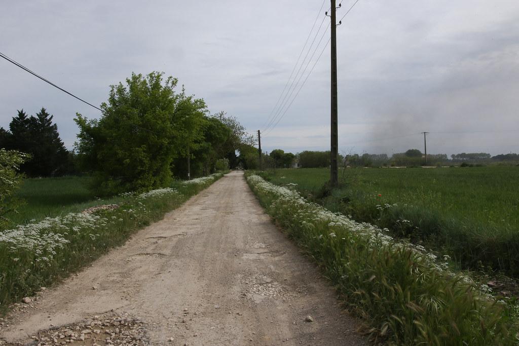 OJ6A0201.jpg