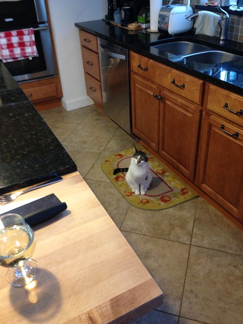 Penny in the kitchen