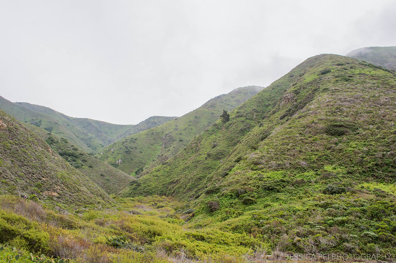 Garrapata State Park Mountain