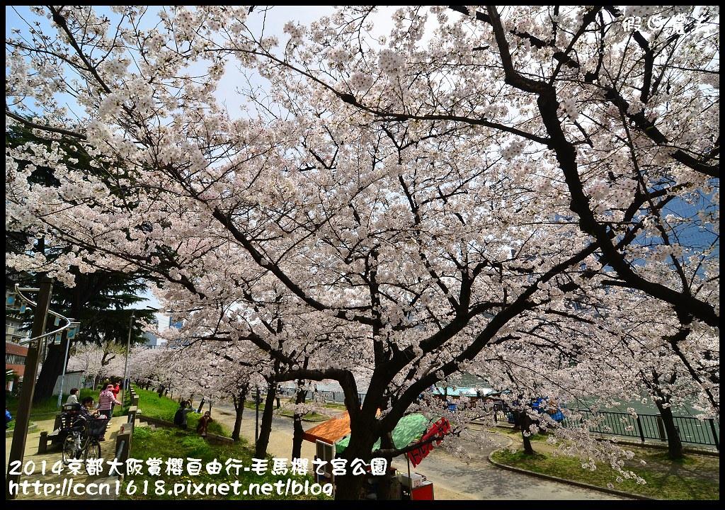 2014京都大阪賞櫻自由行-毛馬櫻之宮公園DSC_1928