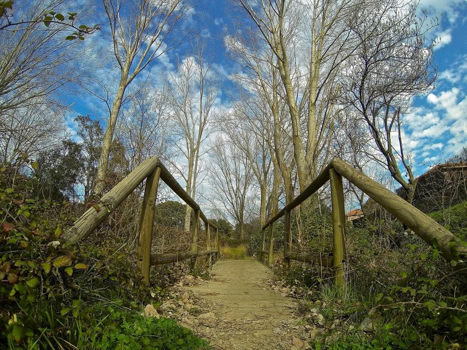 lara-vazquez-mad-lula-style-nature-into-the-wild