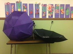 Umbrellas on table in hallway