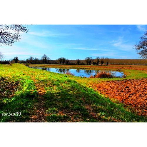 @fotor_apps #Fotor #fotorapp #gironde #entredeuxmers #nature #instagood #color #instalike #instagram #canon #langoiran #magnifiquefrance #magnifique #igersgironde #beautifulfrance #beautiful #paysage #photo #tagsforlikes
