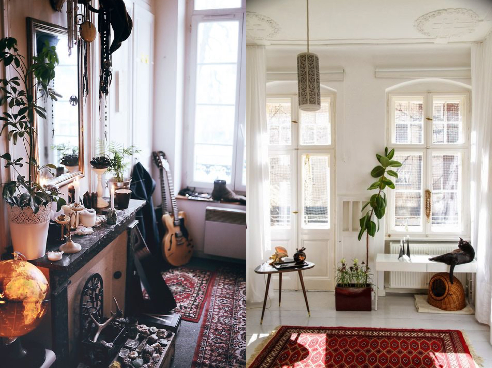 Boho House Plants Interior