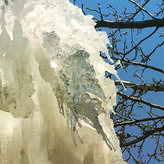 IceFall, tree, sky.