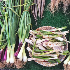 Samples of these already incredible spring onions are tossed with chili, lime and balsamic vinegar... So good! #vegan #vegansd #vegansofig #vegansandiego #whatveganseat #hillcrestfarmersmarket #farmersmarket #sandiego #sdfoodie #p2tv