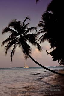 Sunset - Tobago