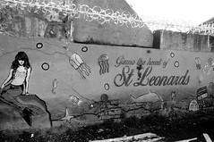 Gizmo the Heart of St Leonards
