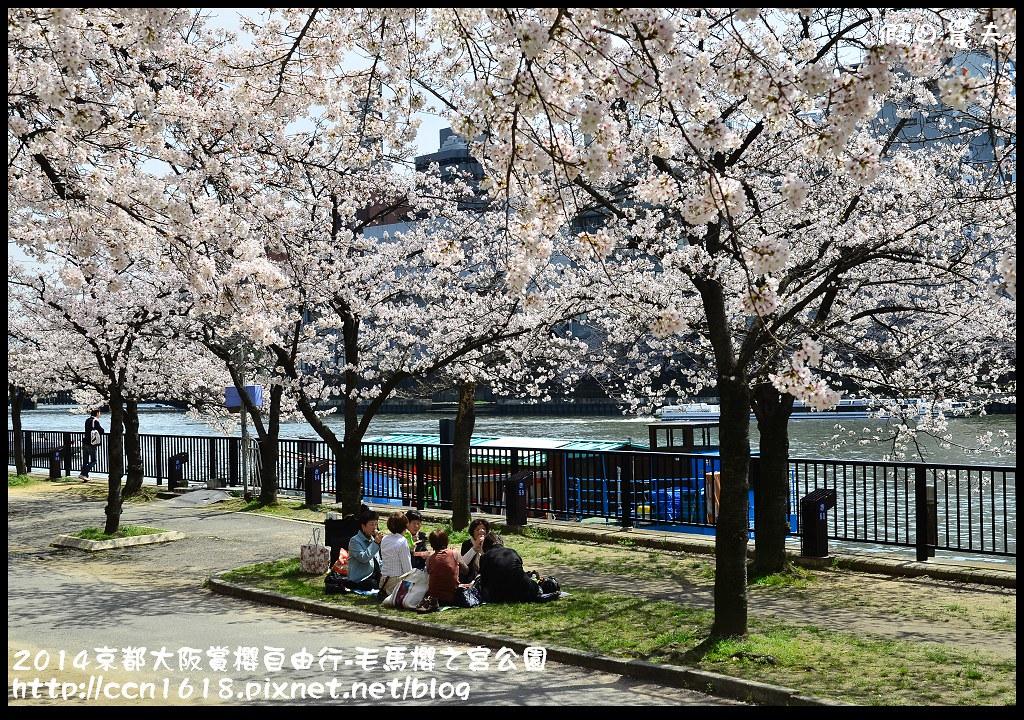 2014京都大阪賞櫻自由行-毛馬櫻之宮公園DSC_2041