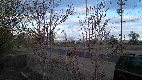 No Fooling: April Snow in Fernley