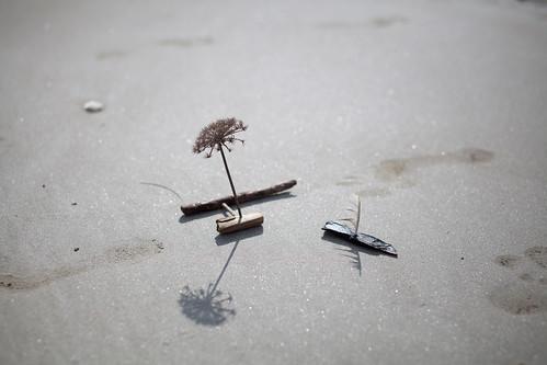 Petit Port Pooh Sticks