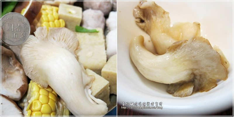 16秀珍菇