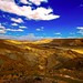 Wadi Zin - Negev Desert - Israel by Lior. L
