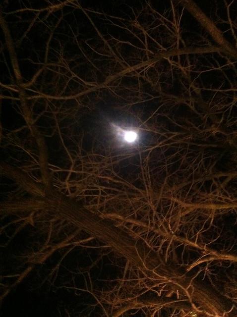 OO Tue #12: Moon