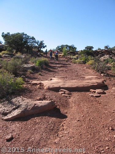 The road to Canyonlands Overlook...we decided walking was safer than driving! Canyon Rims Recreation Area, Utah