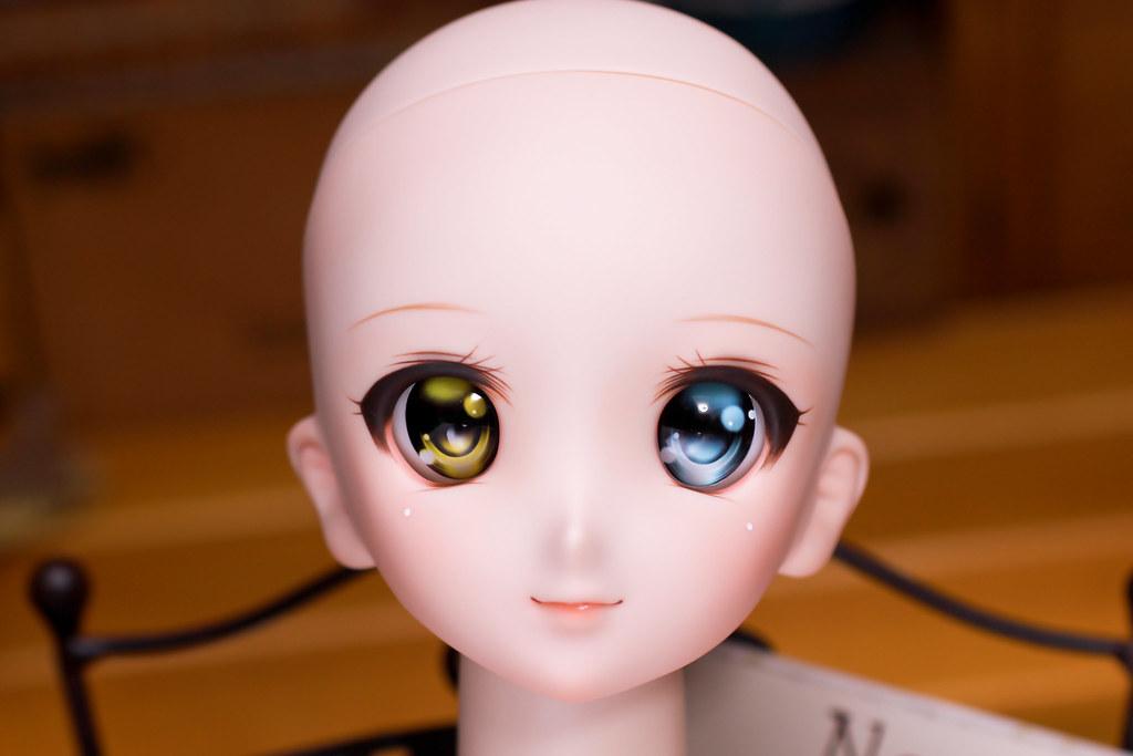 DDH-06(N)bo-head-2