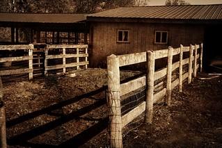fence fence fence fence