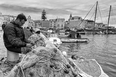 Fisherman at work --- Trani - Puglia - Italia