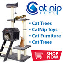 Cat Trees For Sale