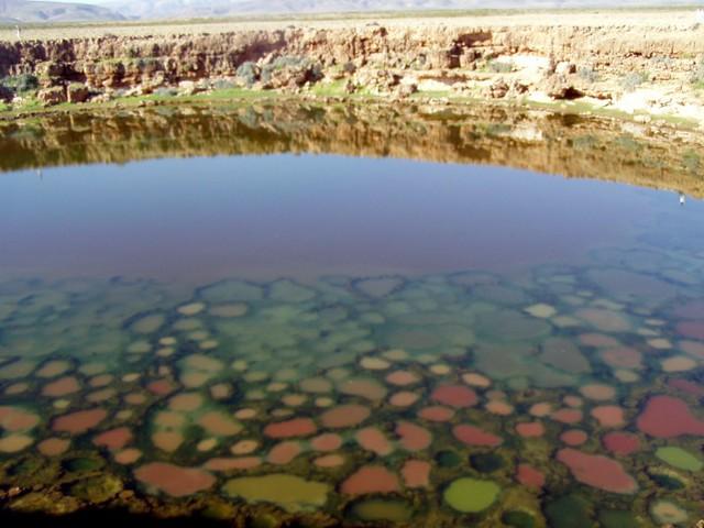 0001socotra-alien-landscape-yemen-salt-planes