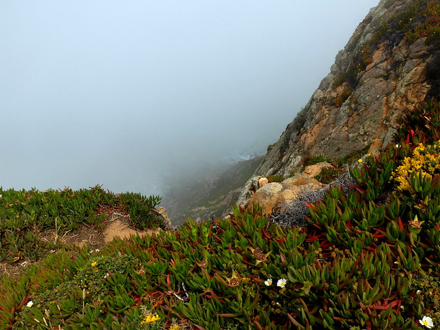 Misty moment in Cabo da Roca