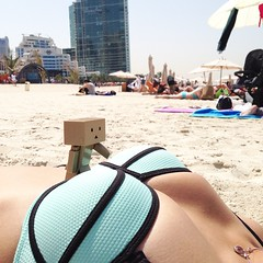 Danbo- What's this? John- You're in trouble #danbo kun #danboard first day on the beach.
